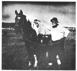 don-segundo-sombra y caballo