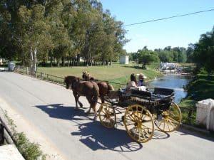 carruaje sobre el puente del medio