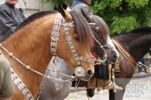gaucho horseback tour