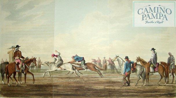 Origins of Argentina Criollo Gaucho Horse
