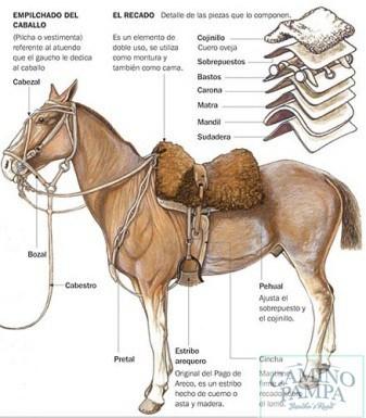 gauchos horseback ride buenos aires