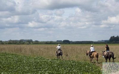 Horseback riding in Buenos Aires ranch Tour