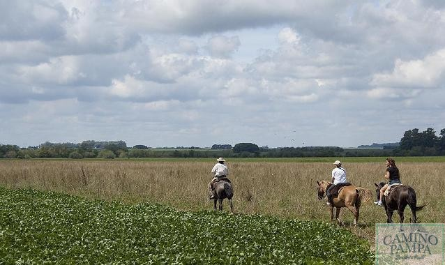 Horseback riding in Buenos Aires ranch Tour