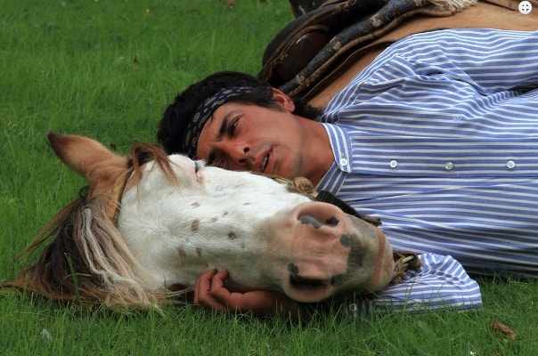 Gaucho horse breaking with Martin Tatta